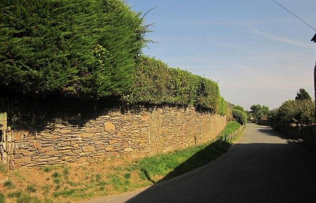 Vicarage Lane, Strete