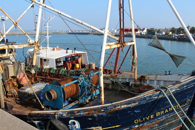 Olive Branch, Stranraer Harbour