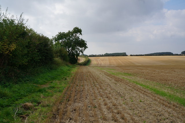 Path heading west from Wold Newton