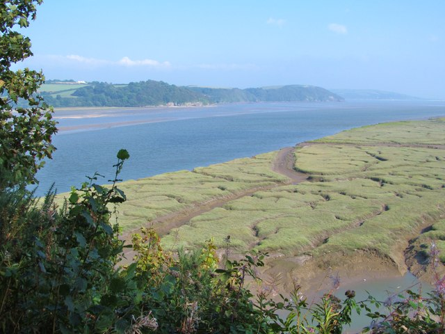 Saltmarsh and estuary