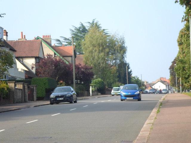 Abington Park Crescent
