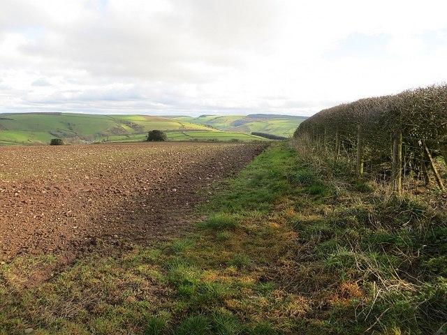 Headland path