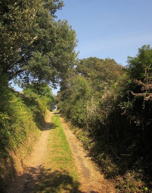 Coast path to Strete