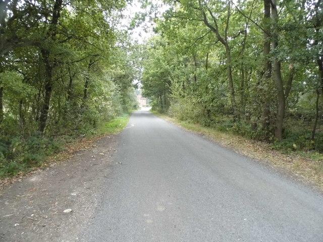 Woodside Lane, Woodside