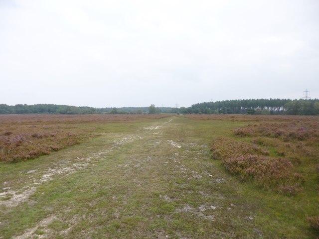 Hale Purlieu, track junction