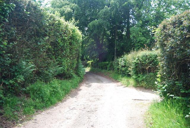 Path to Ashurst Wood