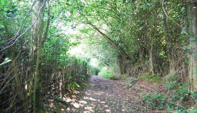 Footpath to Dirty Lane