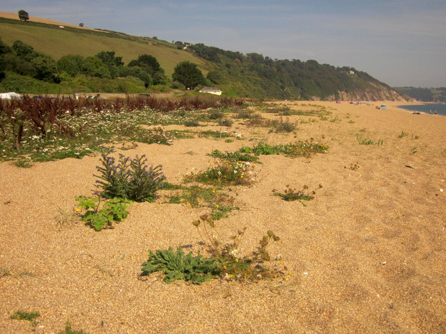 Slapton Sands at Strete Gate
