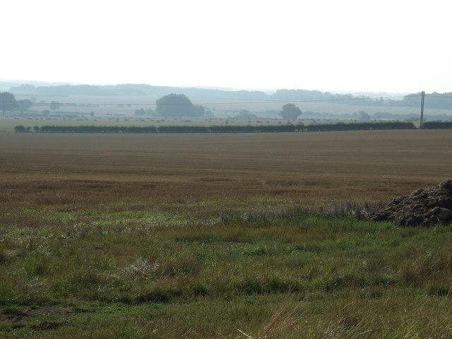 Farmland East Field