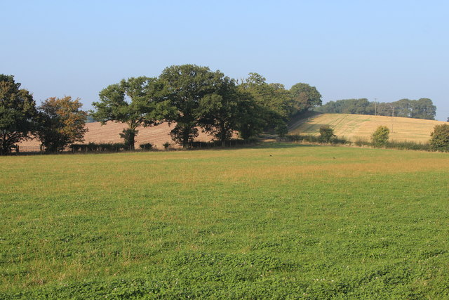 Field north of Pear Tree Cottage