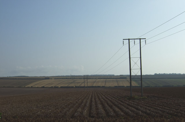 Potato crop and power lines, East Field