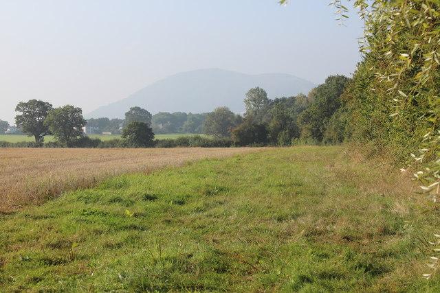 Field of Sherridge Road