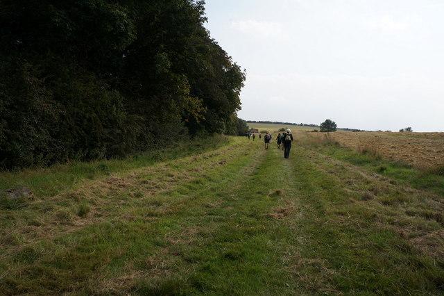 Footpath towards South Farm,  Wold Newton