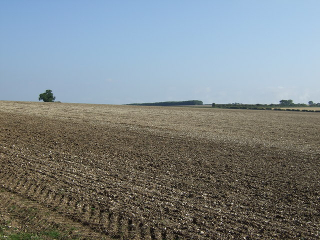 Farmland off Rudston Road