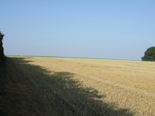 Farmland off Woldgate Roman Road