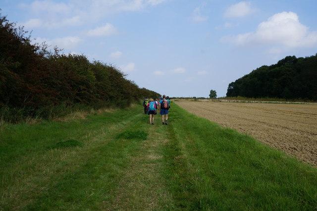 Bridleway towards Stock Furlong (wood)