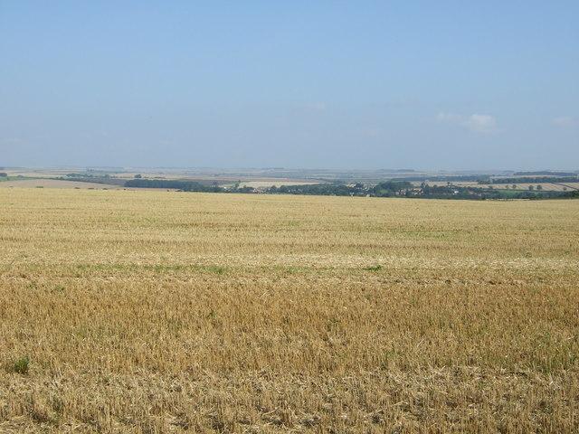 Stubble field south of Woldgate Roman Road