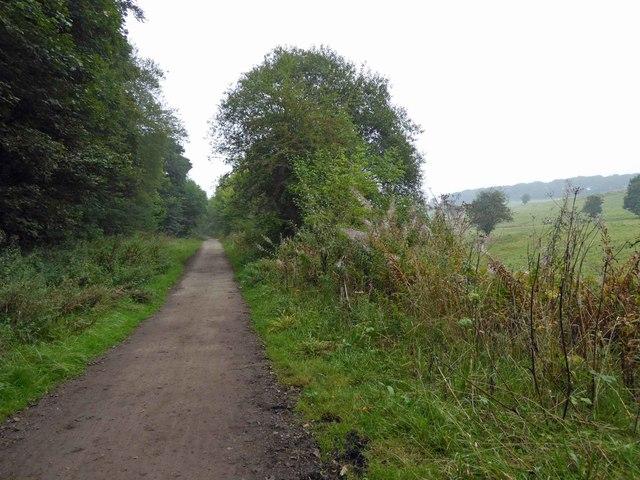 Trans Pennine Trail near Barnsley