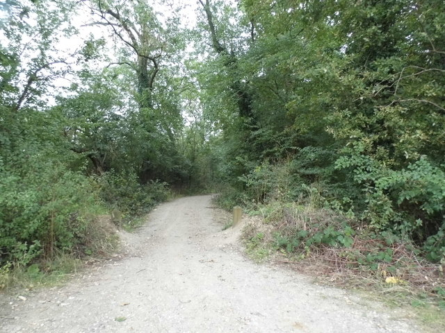 Path off West End Lane