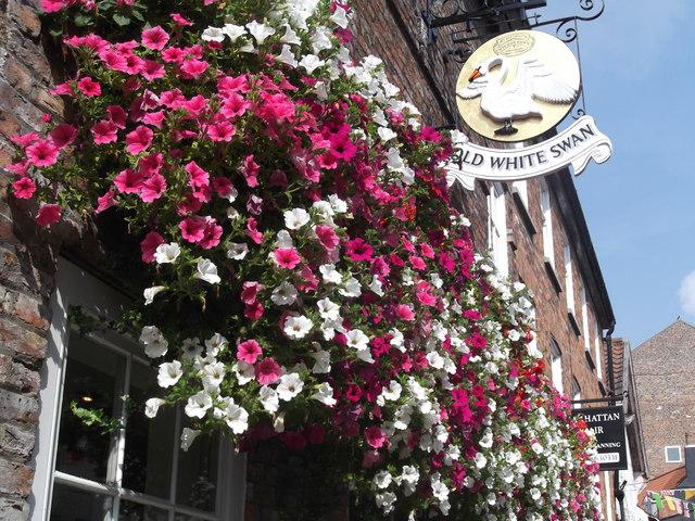 Pub sign, Old White Swan, Goodramgate, York