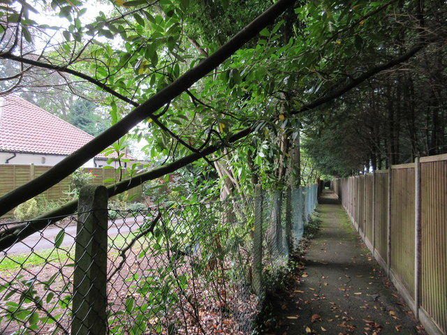 Footpath to Westview Road