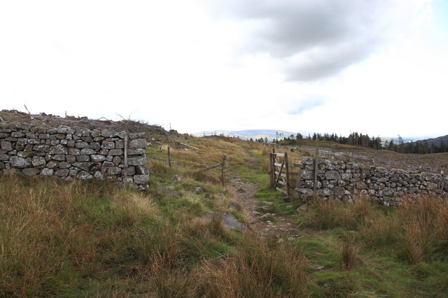 Gate and bridleway, Miterdale Forest