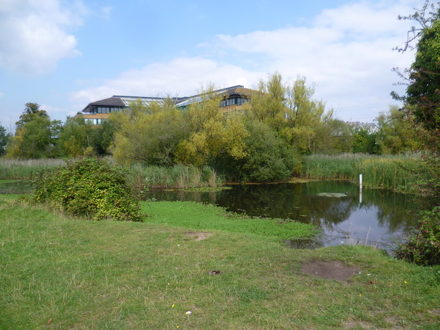 Shortwood Pond