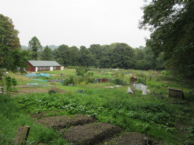 Whyteleafe Allotment site