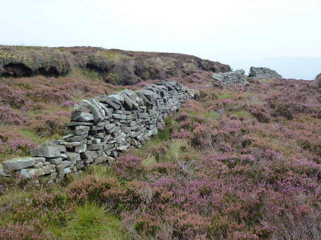 Intermittent wall on Fair Oak Fell