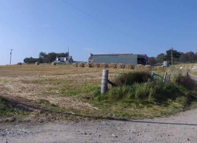 Access to Tillycroy farm