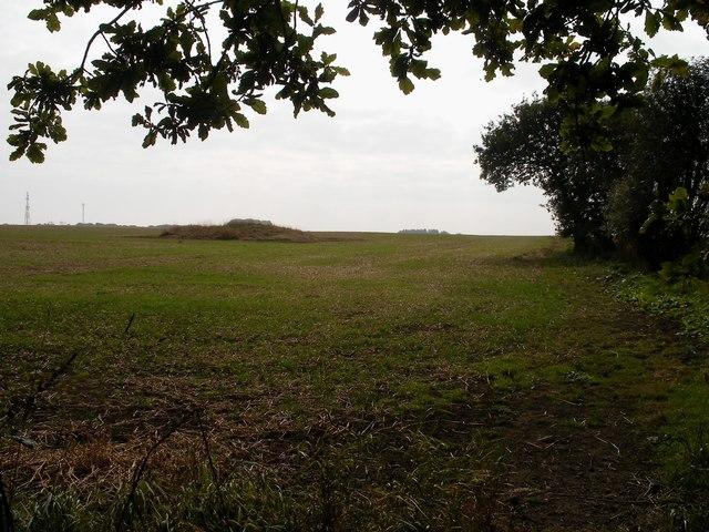 Tumulus, Seamer Moor