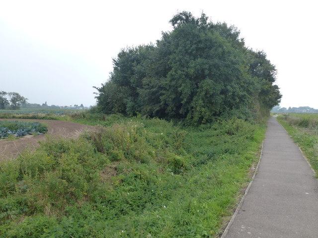 Footpath near Quadring primary school