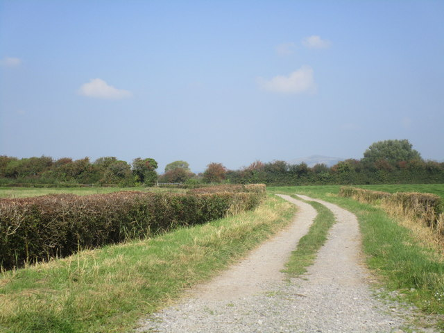 Footpath to East Brent