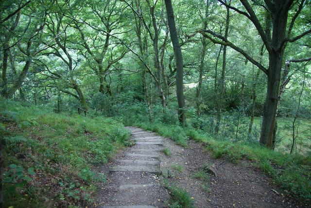 Steps near West Beck