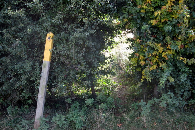 Footpath to Great Lane