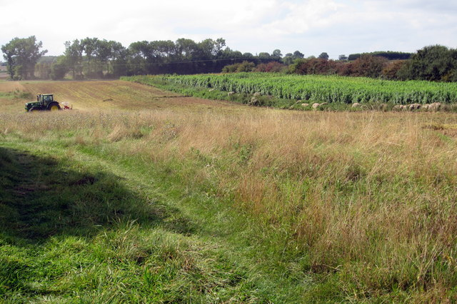 Farming by the Greensand Ridge Way