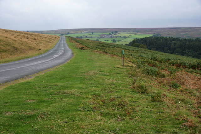 Moorland road above West Beck