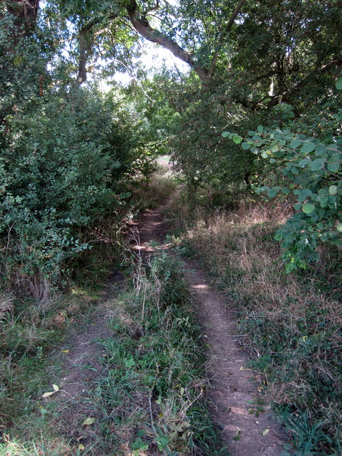 Greensand Ridge Walk