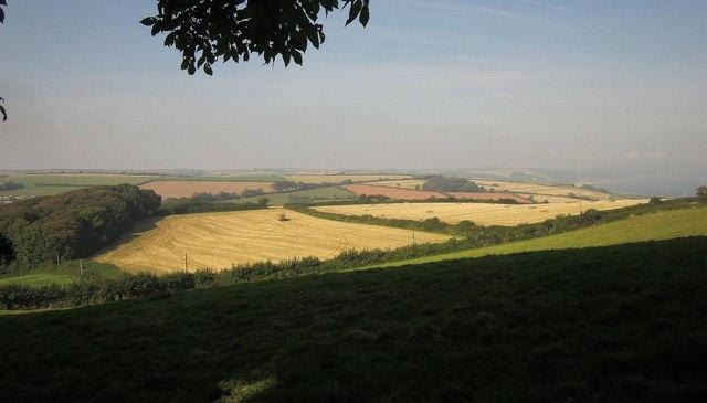 Farmland near Widewell
