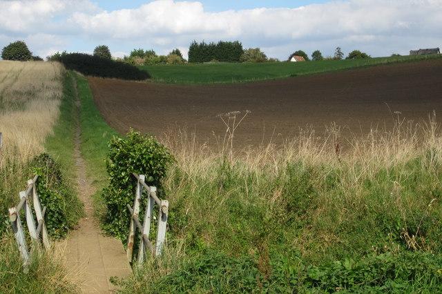 Footpath into Haynes