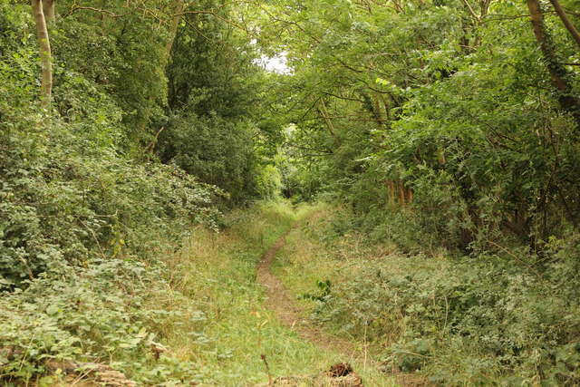 Former trackbed