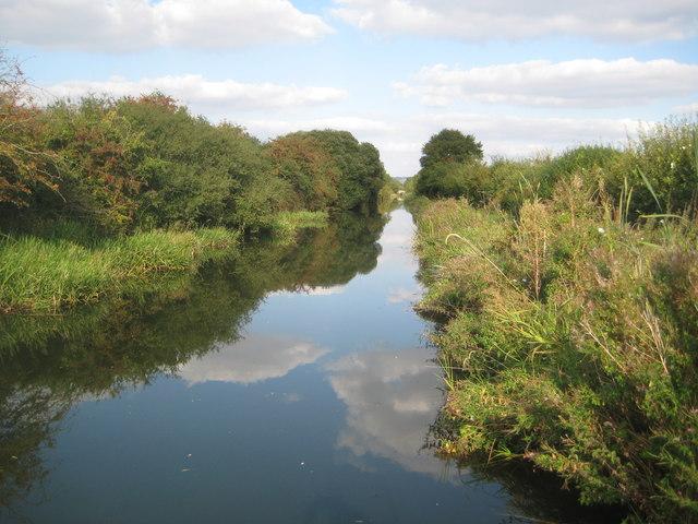 Grand Union Canal: Aylesbury Arm: Reach near Puttenham (1)