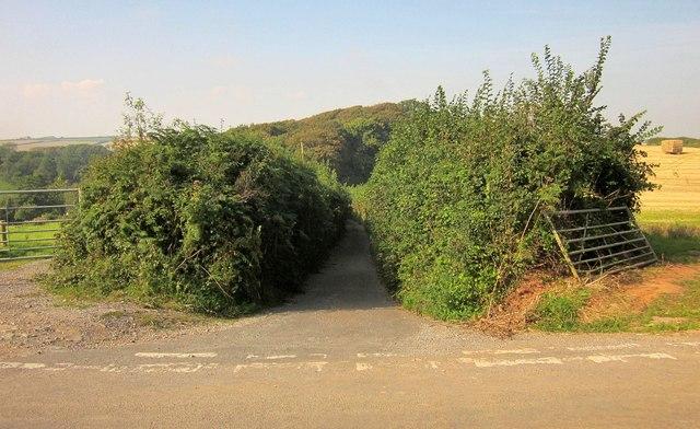 Junction near Widewell