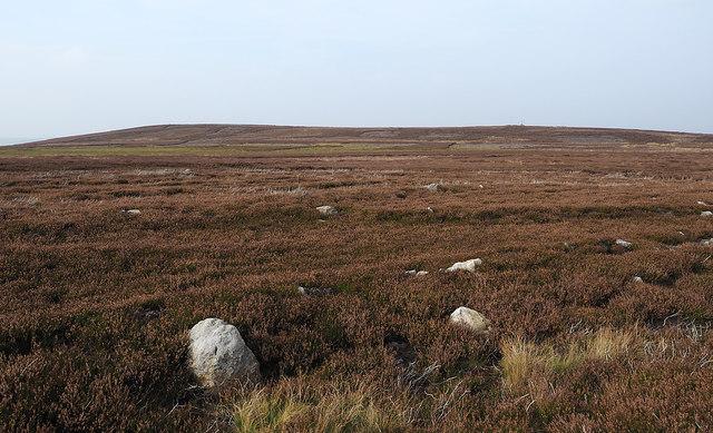 Moorland rising towards Stobb Cross
