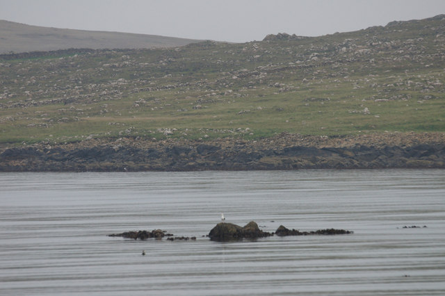 Rocks at low tide, Harold's Wick