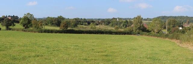 Field near Alfrick