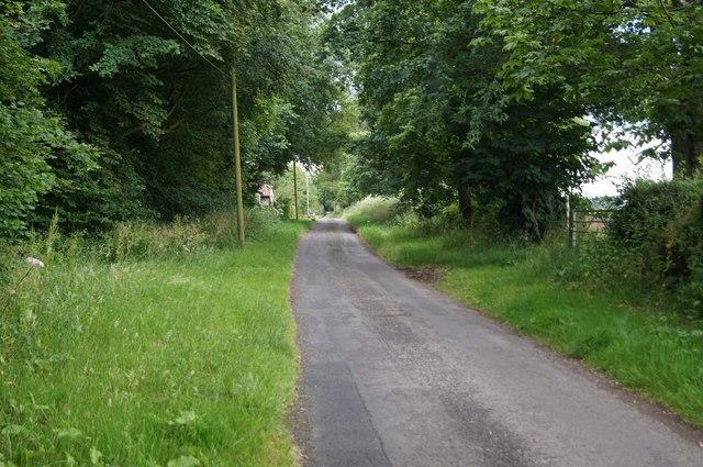 View along Berrydown Lane