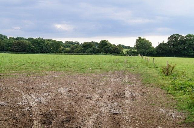 Field off Berrydown Lane