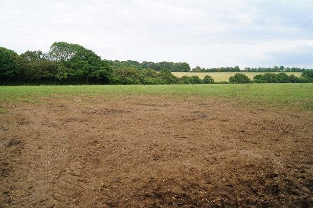 Muddy field access