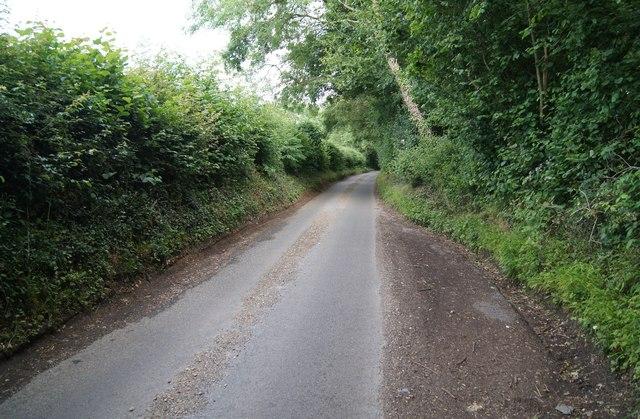 Passing place - Waltham Lane